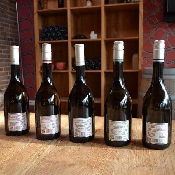 Proefpakket Gróf Degenfeld wijnen-781